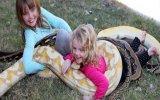 Evlerinde Çocuklarına 5 Metrelik Piton Yılanı Beslettiren Aile  ABD