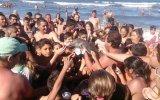 Yavru Yunusu Selfie Uğruna Susuzluktan Öldürmek