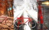 İnternetin Yeni Fenomeni Kırmızı Bisiklet