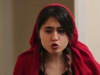 Kırmızı Başlıklı Kız (Parodi)