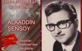 Derdimi Arzetmeye Ol Şuha Bir Dem Bulmadım  Alaaddin Şensoy