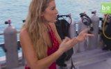 Brezilyalı Aktivist ve Modelden Su Altında Köpek Balıklarıyla Fotoğraf Çekimi