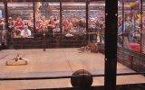 Robot Savaşları 2015 Smackdown Kadar Eğlenceli
