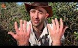 Karınca Yuvasına Ellerini Sokan Çılgın Adam