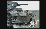 2. Dünya Savaşı'nda İntihar Bombacısı Köpekler