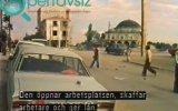 İsveç Televizyonundaki Kulu Belgeseli 1981