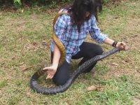 Yılanı Üzerine Atlayarak Yakalayan Kadın