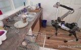 Bulaşık Yıkayan Muz Kabuğuna Basıp Düşen Robot  Spotmini