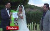 Düğüne Çiçek Yerine Köpek Mamasıyla Gelmek