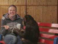 Şenpanze İle Dalga Geçen Adam