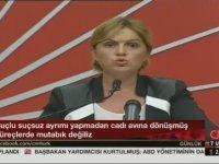 Hükümet Atatürkçü Kim Varsa Toplama Gayretine Girdi - Selin Sayek Böke