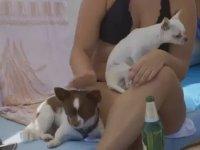 Köpekler İçin Plaj - Hırvatistan