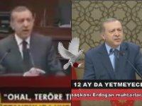 Ohal Teröre Teslim Olmaktır - RTE