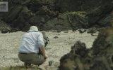 İguananın Aslında Yılanlardan Kaçamamış Olması Kamera Arkası