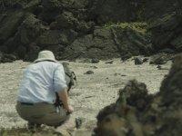 İguananın Aslında Yılanlardan Kaçamamış Olması (Kamera Arkası)