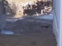 Su İçin Kazılan Kuyudan Doğalgaz Fışkırması