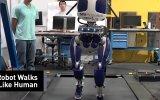İnsan Gibi Yürüyen ve Gören Robotların Geleceği