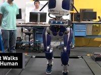 İnsan Gibi Yürüyen ve Gören Robotların Geleceği?
