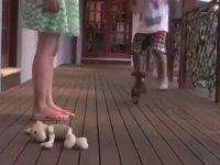Mama Olarak Yürek Yiyen Küçük Köpek