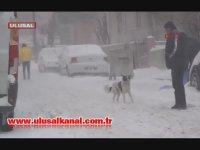 Erzurum Valisine Bizim Çocuklar Kutup Ayısı mı Diye Sormak
