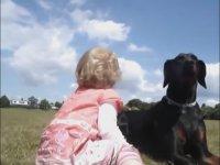 Köpeklerin Yanında Çocuklara Vurursanız Ne Olur?