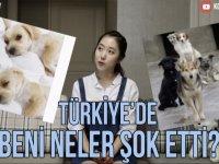 Türkiye'de Nelerden Şoke Olduğunu Anlatan Koreli