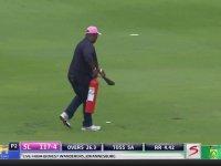 Güney Afrika'da Kriket Maçını Arıların Basması