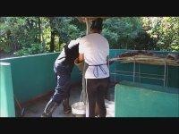 Küba Esnafıyla Şeker Kamışı ve Hayata Dair Sohbetler
