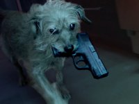 Köpek Temalı John Wick Parodisi