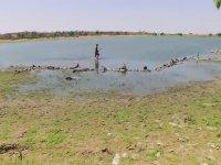 Ed Stafford İle Kurtuluş Öyküleri - Namibya