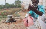Altı Parmaktan Damak Çatlatan Keçi Akciğeri Kavurma