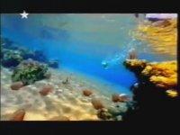 Star Reklam Kuşağı (2001)