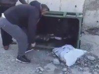 Çöpe Atılan Yavru Kedi