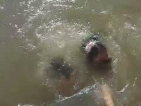 Küçük Kızı Suya Çekerek Korkutan Deniz Aslanı