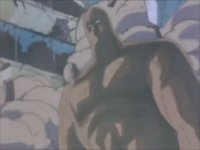Fist of the Northstar - Anime