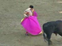 Boynuz Darbesi ile Matador Öldüren Boğa