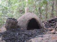 Doğada Yaşayan Adamdan Kömür Yapımı