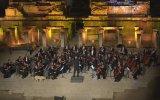 Senfoni Konserinde Ortaya Çıkan Köpek