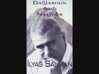 İlyas Salman - Kayanın Dibinde  Mal mı Yayılır