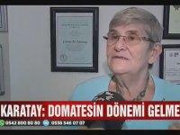 Canan Karatay - Domates Meyvedir
