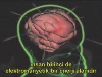 Carl Gustav Jung -  Kollektif Bilinç