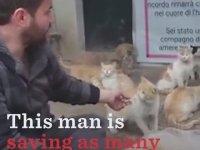 Kediler İçin Suriyede Kalan Adam