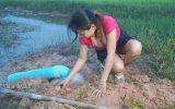 Kamboçya Usulü Yılan Tuzağı