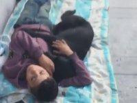 Sokak Köpeğine Sarılıp Uyuyan Çocuk