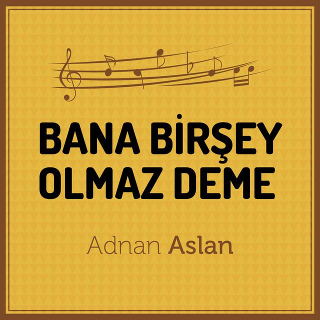 Adnan Aslan