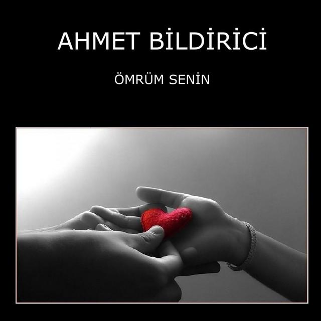 Ahmet Bildirici