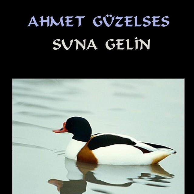 Ahmet Güzelses