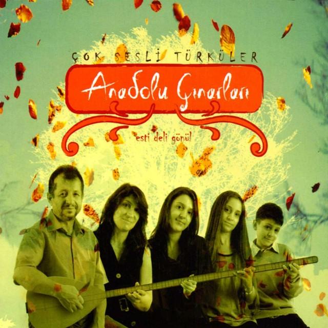 Anadolu Çınarları