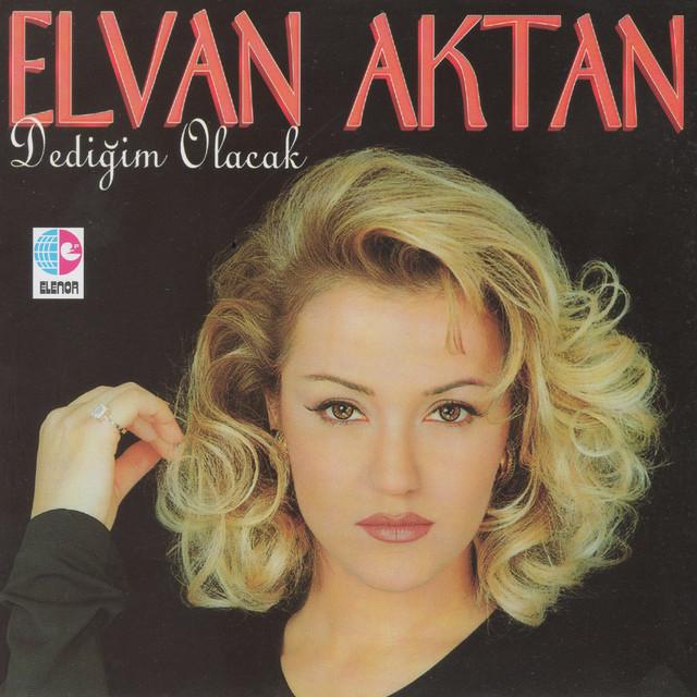 Elvan Aktan