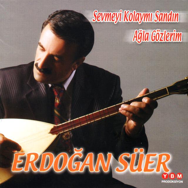 Erdoğan Süer